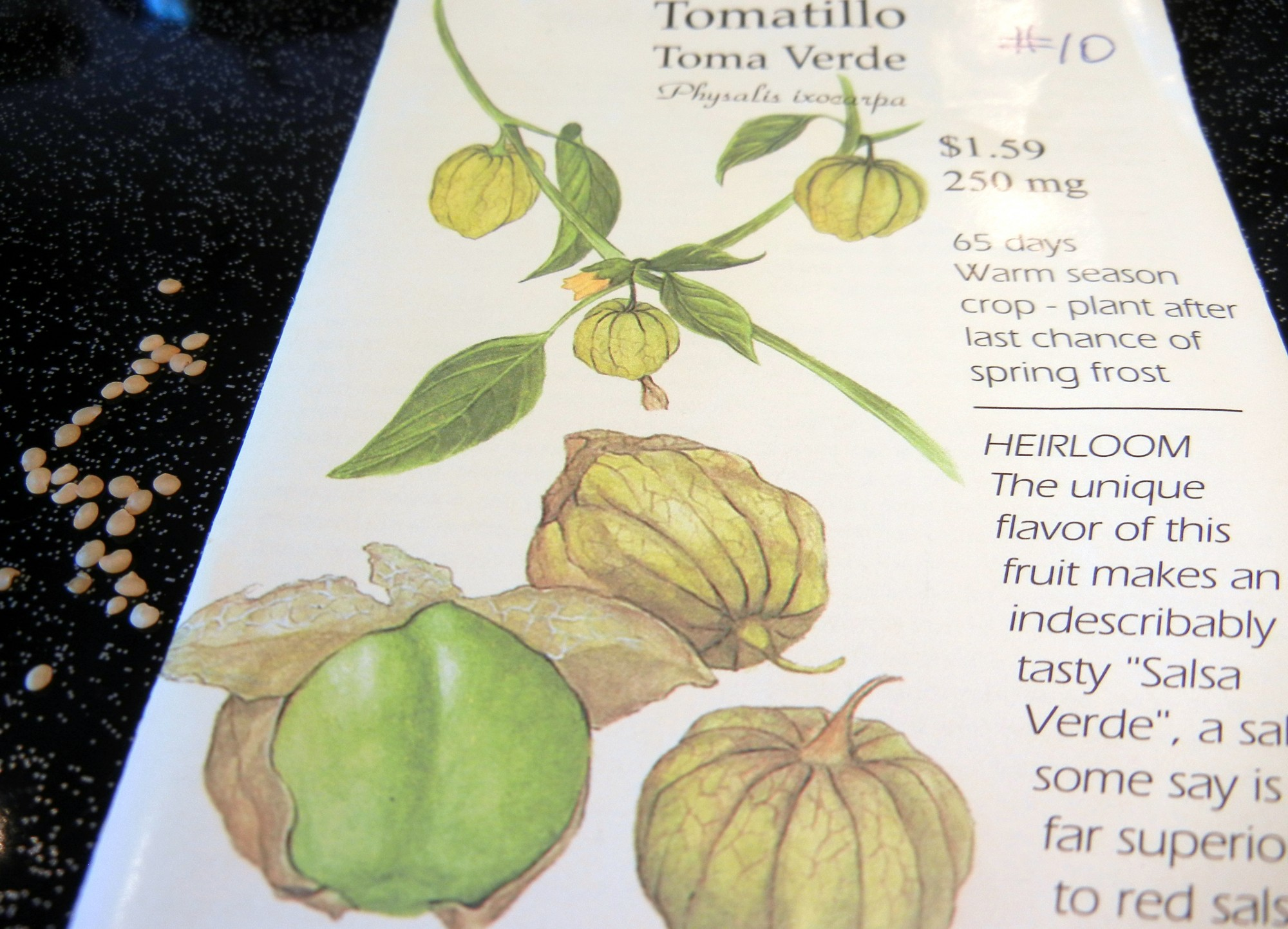 Tomatillos ~ A Salsa Verde Must!, Mexican cuisine, small green fruit, green salsa recipe, roasted tomatillo recipe, ingredients, directions, garden, planting, all about tomatillos, chilled sauce, green sauce, condiment, zesty, paper husks, Latin American green sauces, sweet-sour, searing, piquante,Seeds are reddish and very much like tomato seeds. Heirloom.