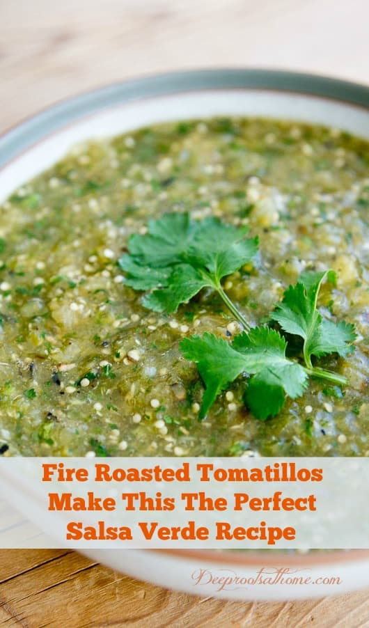 Fire Roasted Tomatillos Perfect this Salsa Verde Recipe. Latin American green sauce