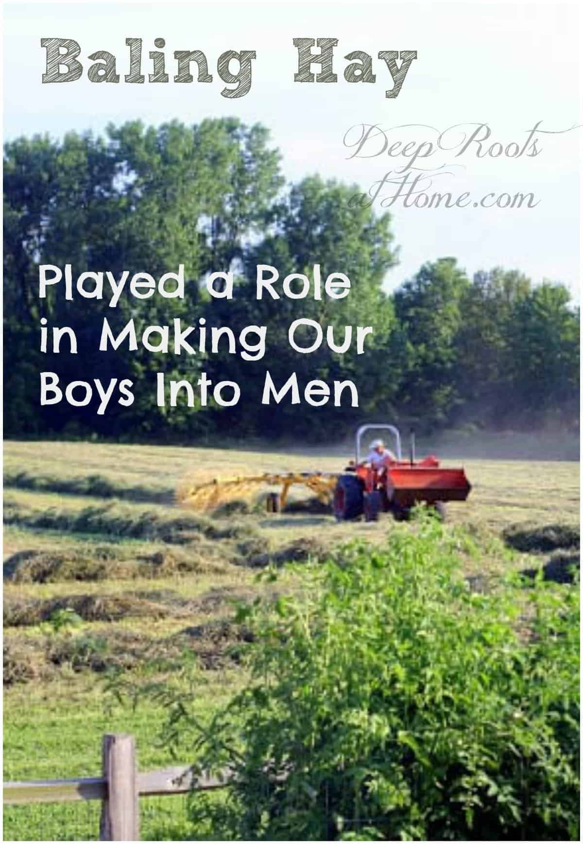 Baling Hay Played a Role in Making Our Boys Into Men. raking windrows