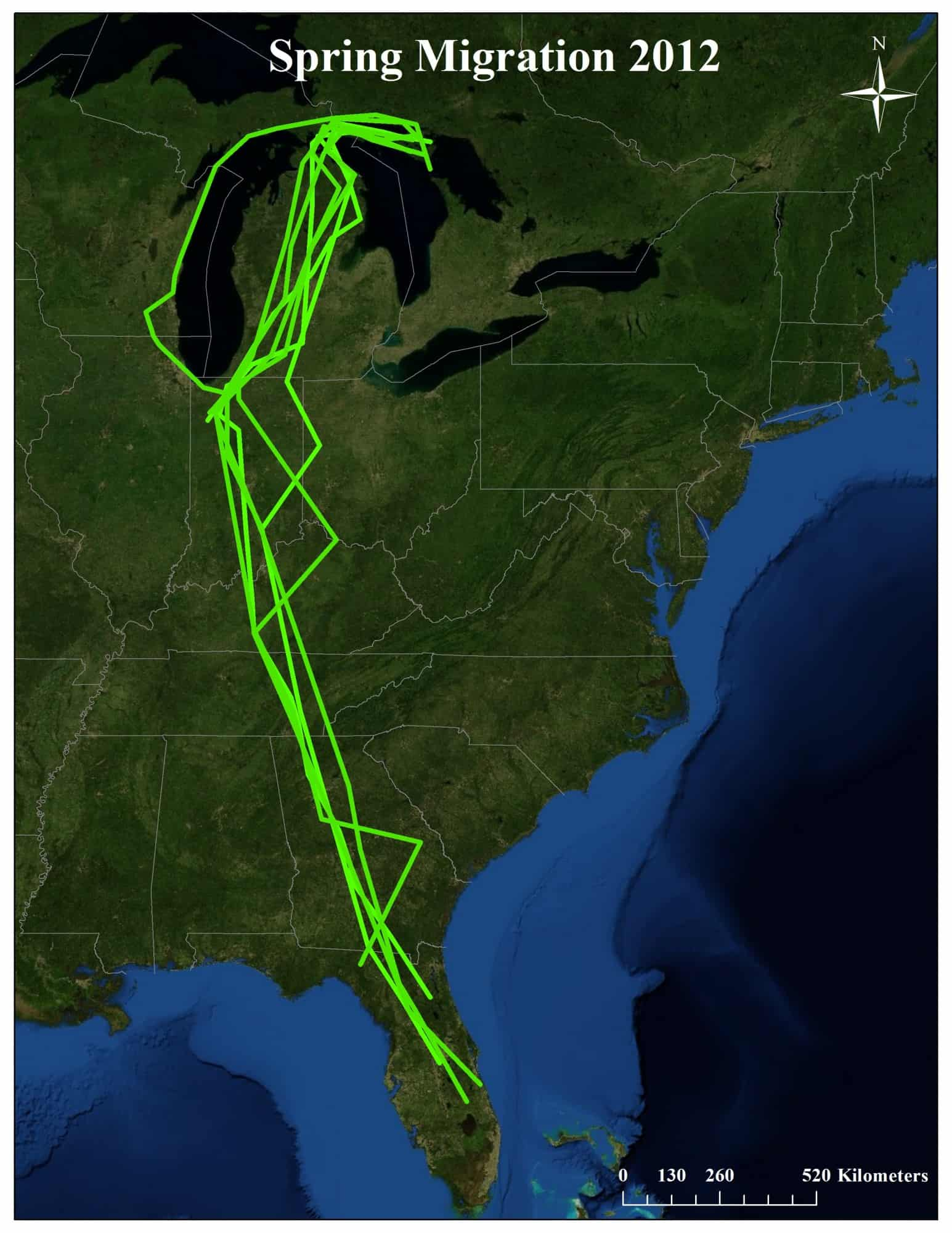 Sandhill Crane Migration Brings Visitors To Our Yard. Sandhill migratory map.