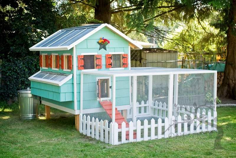 What Is A Chicken Tractor and Thoughts On Having Chickens, permanent chicken house, chicken coop, egg/nesting boxes