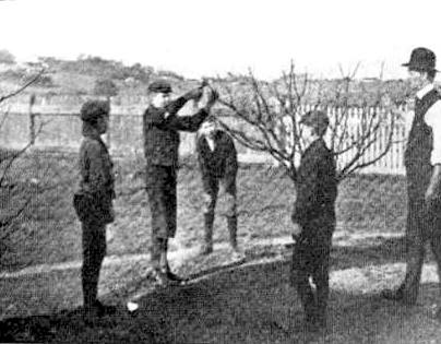 The Right and The Wrong Way & When To Prune Fruit Trees. Vintage, a pruning class of students
