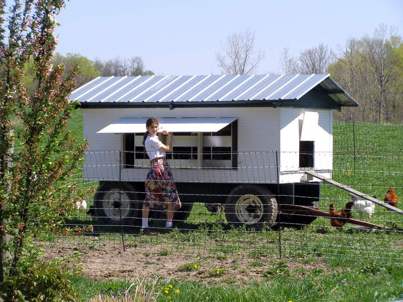 Our old chicken wagon with egg boxes for 12 chickens, pull with lawn mower