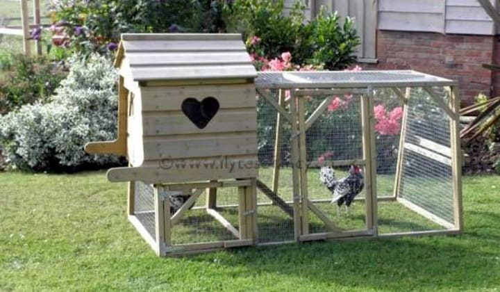 What Is A Chicken Tractor and Thoughts On Having Chickens. A cute, portable chicken coop