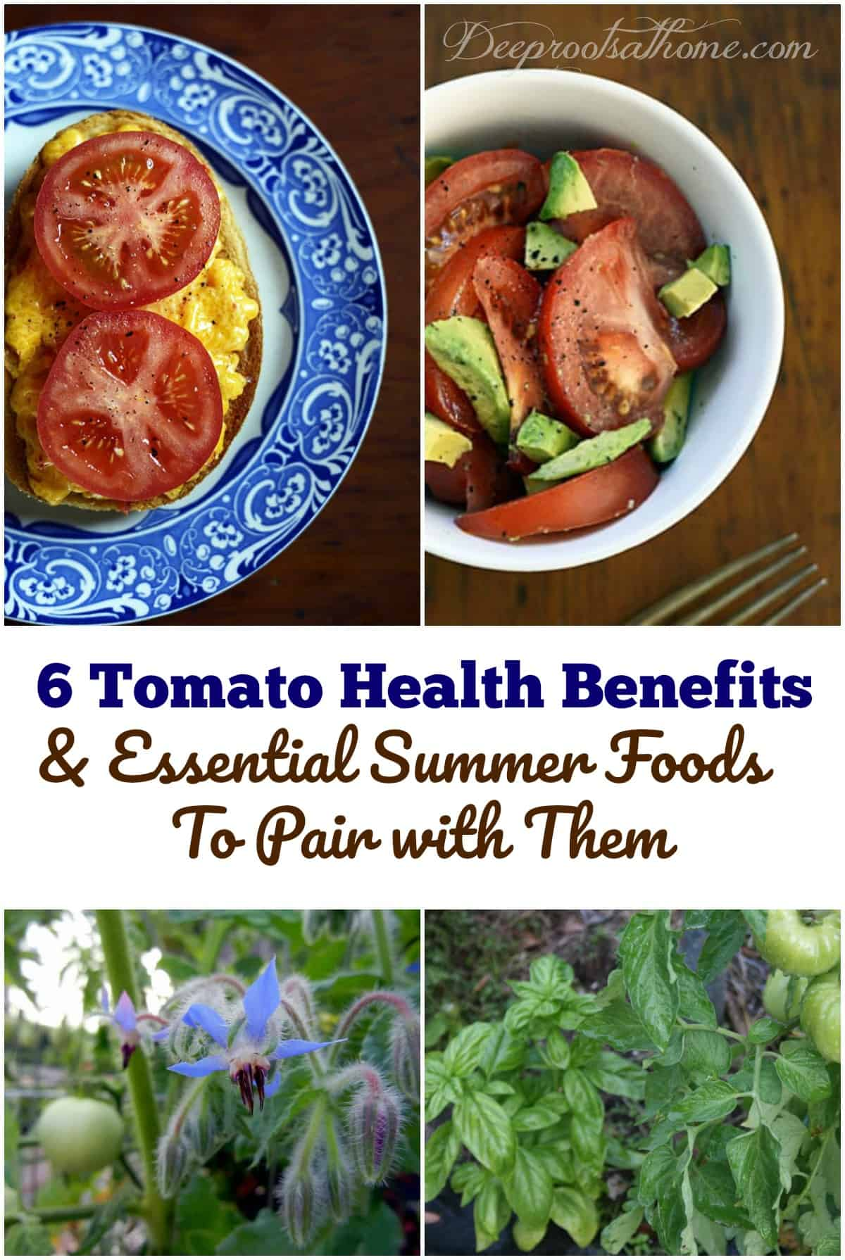 6 Tomato Health Benefits & Essential Summer Foods To Pair with Them. 2 recipes with tomatoes. Pinterest image.