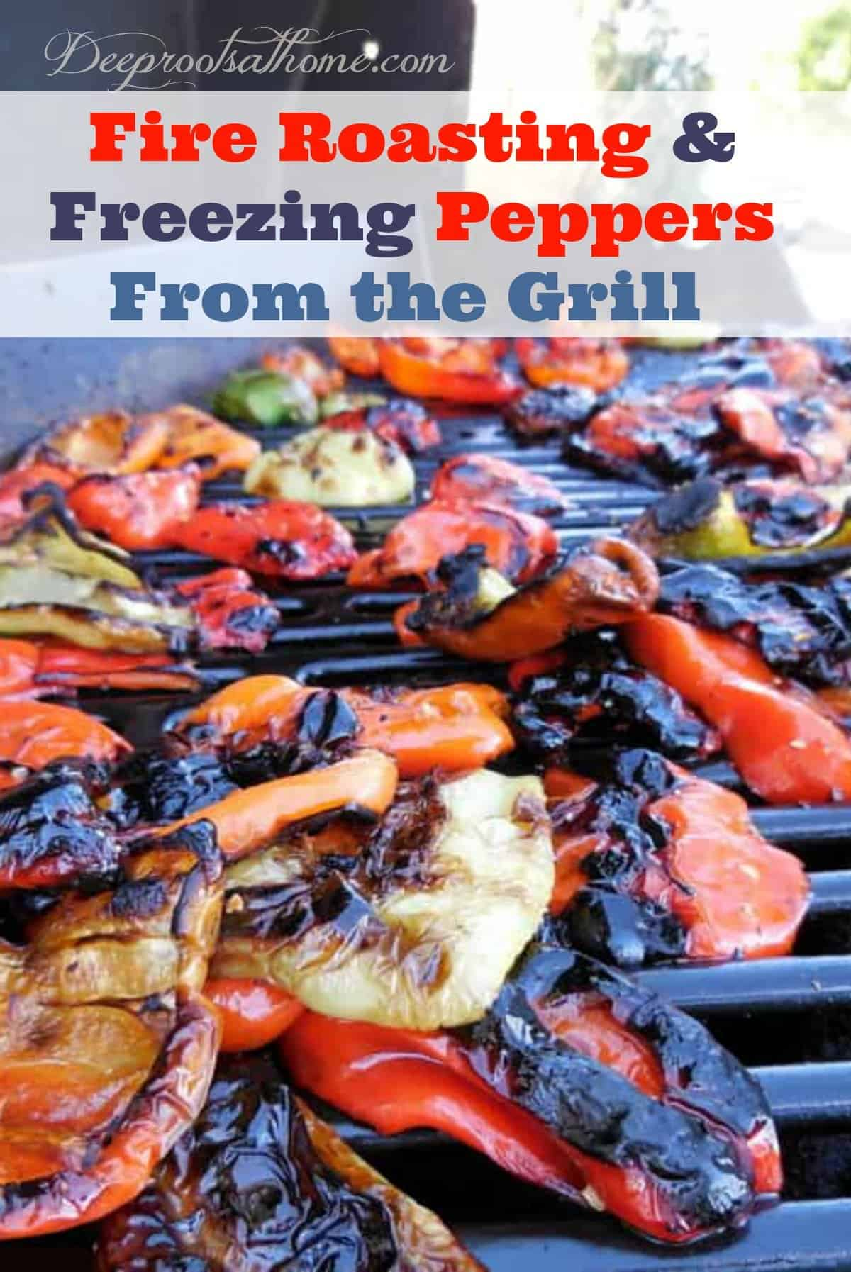 Fire Roasting And Freezing Colored Peppers From the Grill