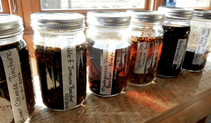 tincture making