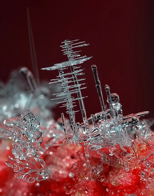 Winter's Hidden Microscopic Beauty In The Snowflake. An ice crystal
