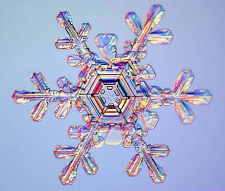 Winter's Hidden Microscopic Beauty In The Snowflake. electron microscopy of a snowflake