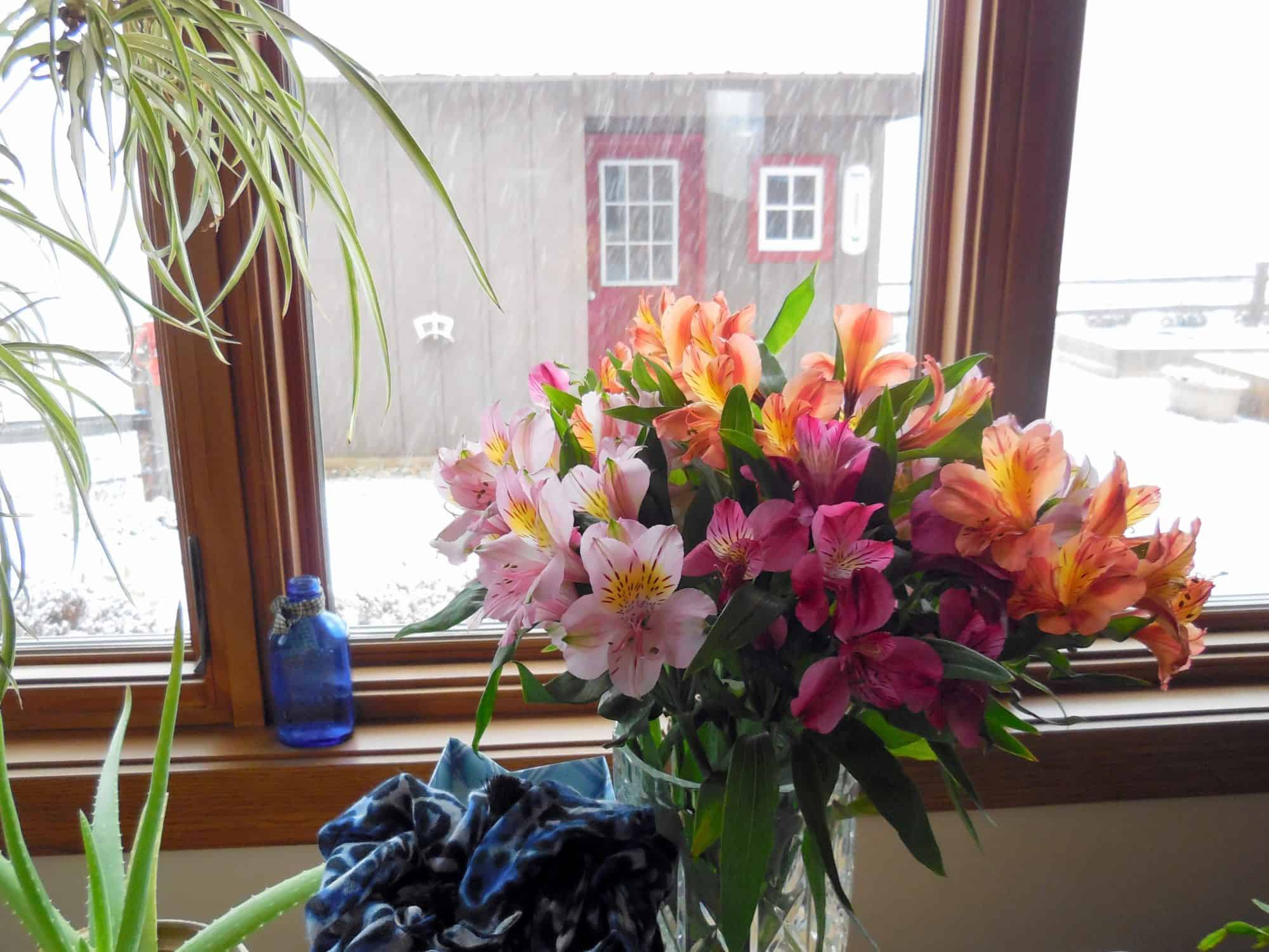 Using Color In Winter, To Cheer My Home & My Heart. A bouquet of alstromeria