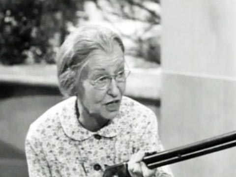 Backyard Birds and Winter Food Sources. Granny with her gun, Beverly Hillbillies
