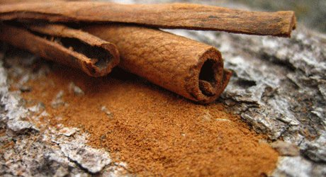 Honey And Cinnamon: Powerful Duo Knocks Colds And Much More. Ground cinnamon and whole cinnamon sticks.