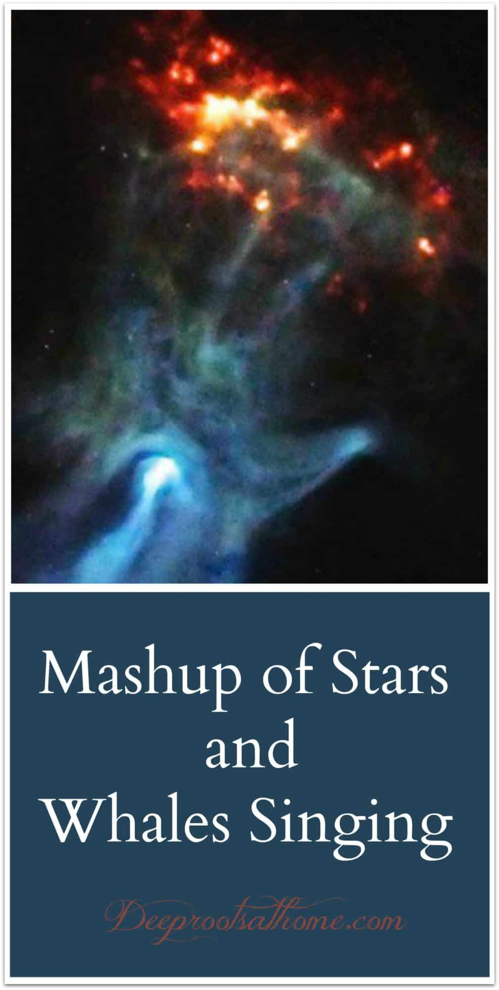Mashup of Stars and Whales Singing God's Praises. A Pulsar's Hand