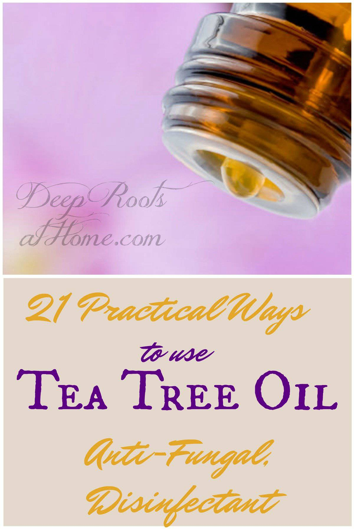 Tea Tree Oil: 21 Practical Ways To Use This Anti-Fungal Disinfectant. An essential oil bottle