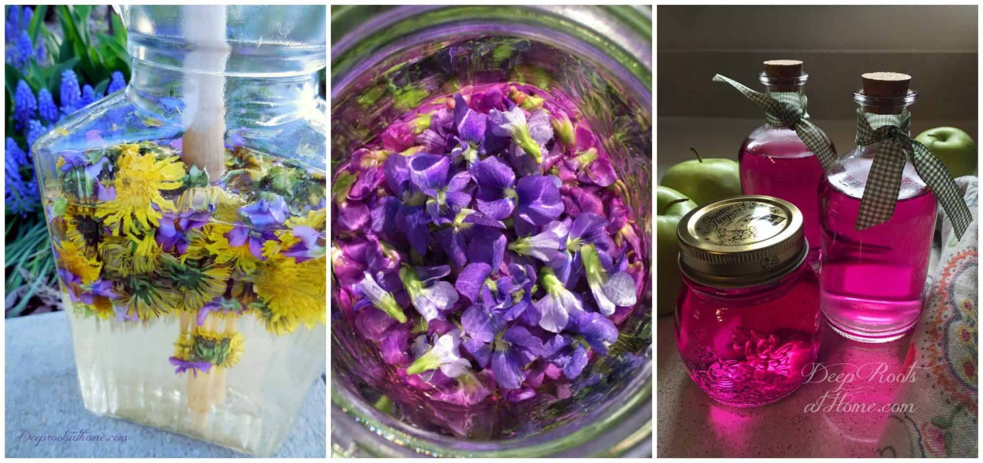 dandelion violet lemonade and violet vinegar