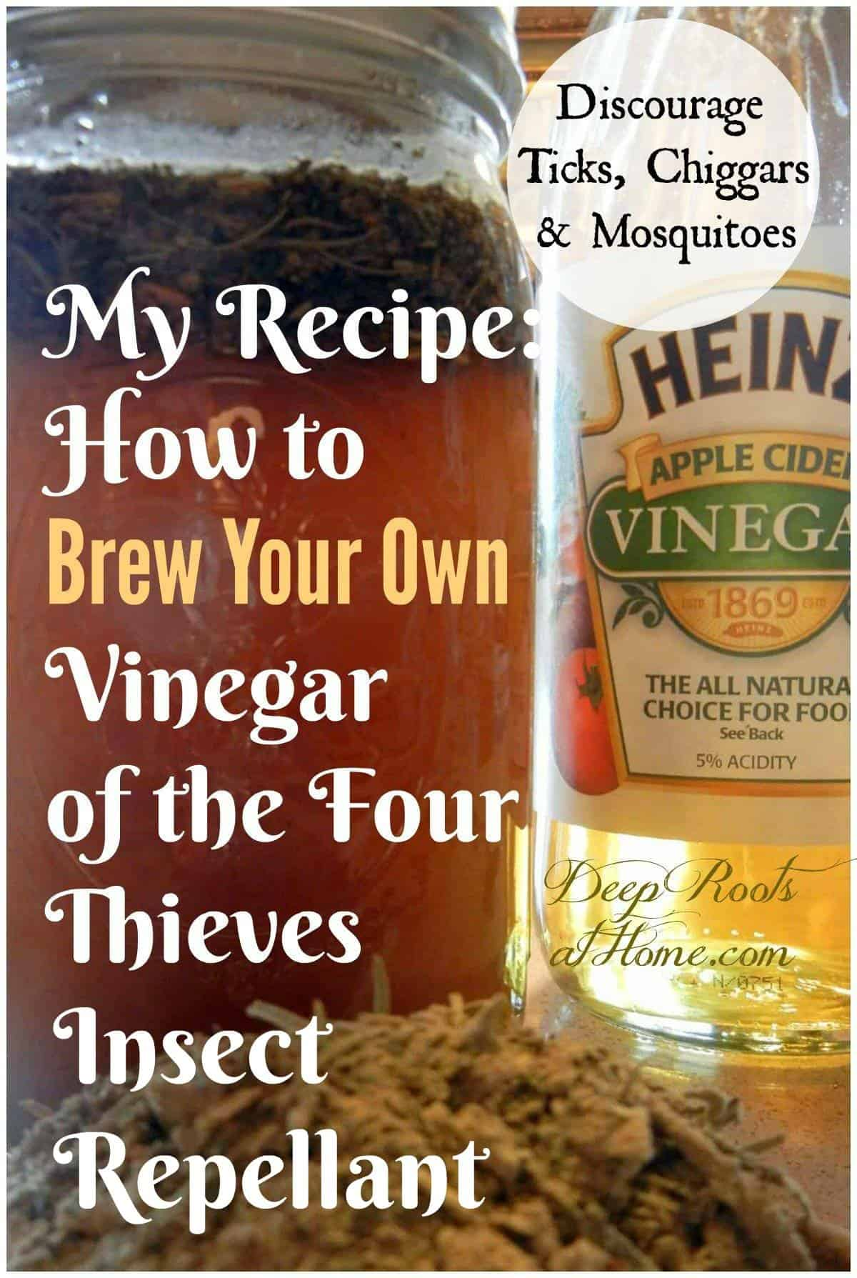 Insect Repellant: Vinegar of the Four Thieves for Chiggers, Mosquitoes. A diy natural insect repellent of dried herbs
