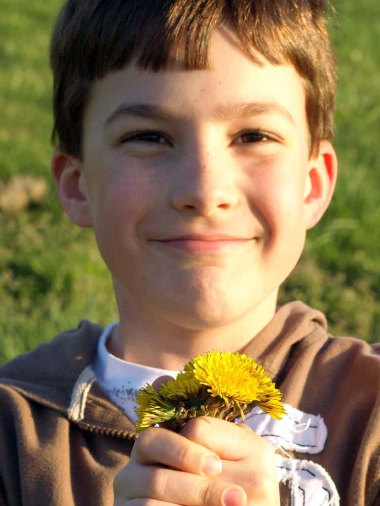 Cut Flowers On Your Table: The Secret To Long-Lasting Bouquets. boy holding bouquet of dandelions