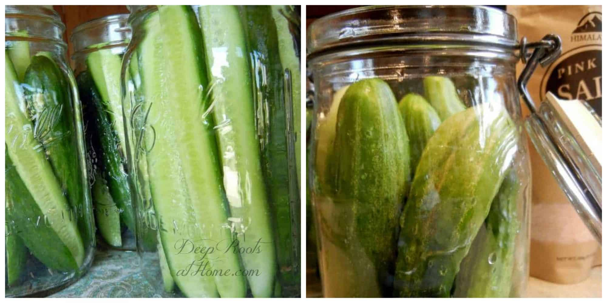 Lacto-Fermented Pickles Like I Had As A Girl, No Canning. slicing and stuffing pickles into jars.