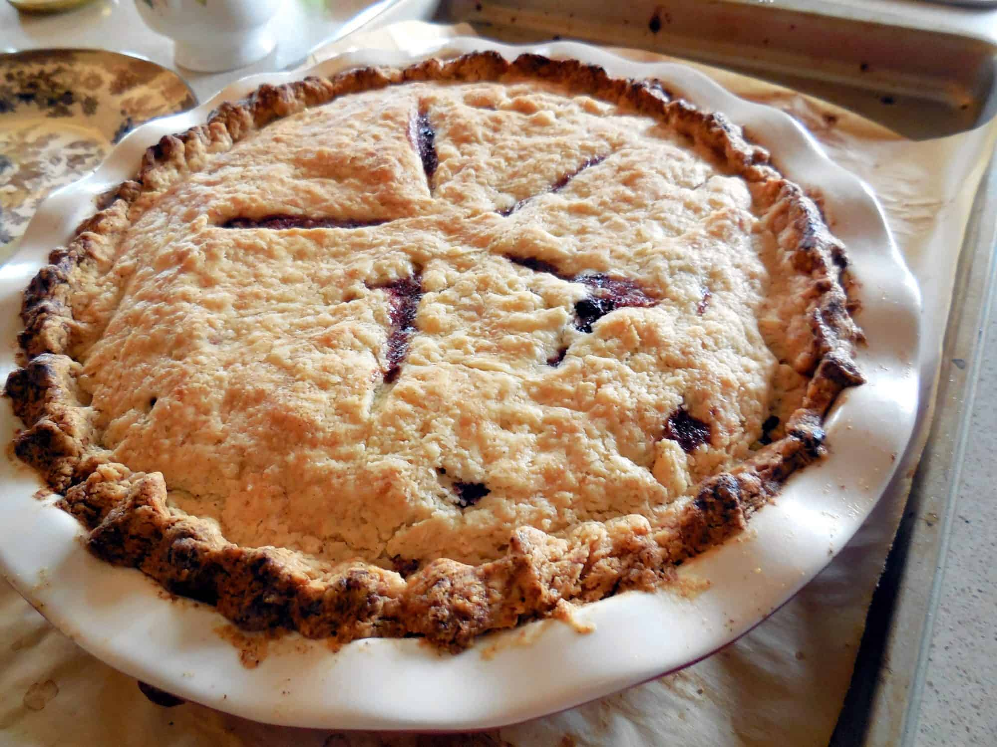 Aroniaberry Love and 6 Recipes. A fresh from the oven aroniaberry pie with a beautiful golden crust