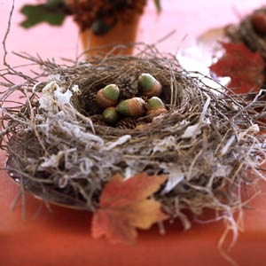 18 Classy, Natural Elements for Fabulous Fall Decor & Color. A Pottery Barn bird's nest with acorns