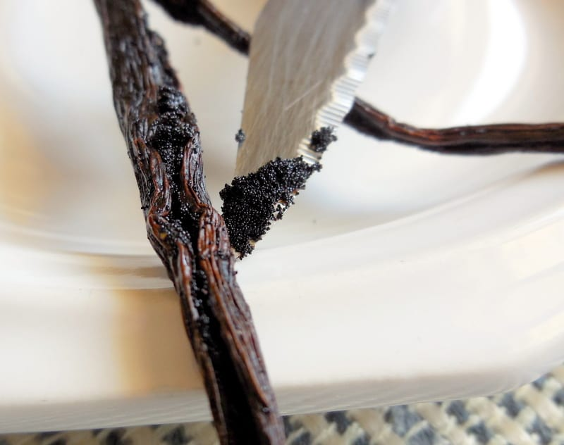 Making Vanilla Sugar For Baking and Holiday Gift-Giving. The seeds inside a vanilla bean