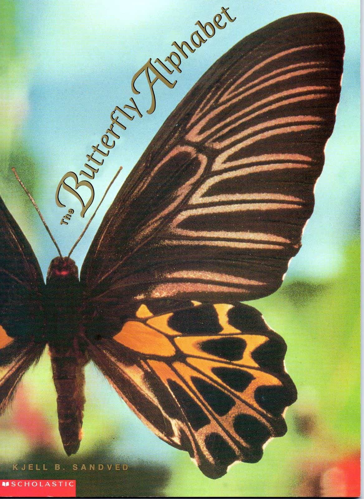 book The Butterfly Alphabet
