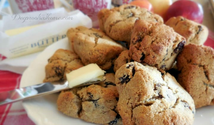 almond flour scone