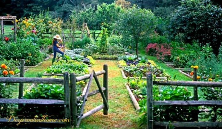 4 Ways To Keep Monsanto Out Of Your Home Garden. A verdant vegetable and flower garden