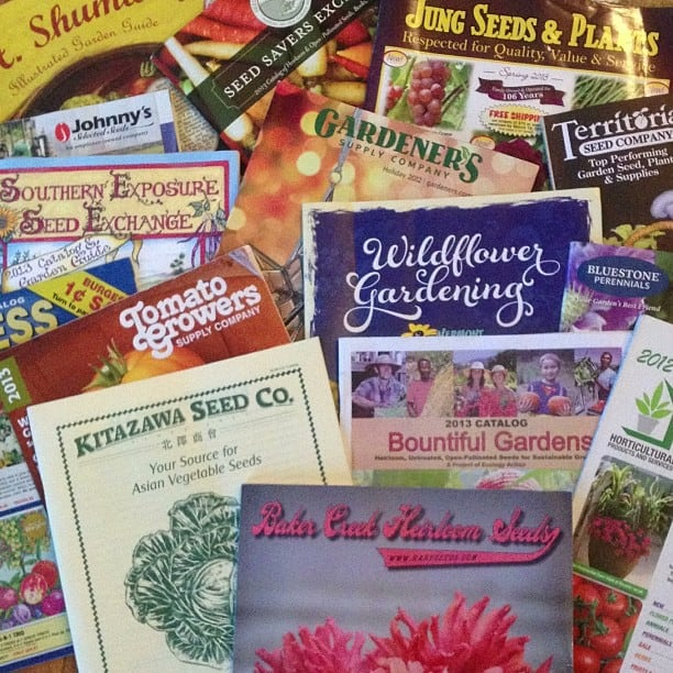 seeds catalogs - 4 Ways To Keep Monsanto Out Of Your Home Garden