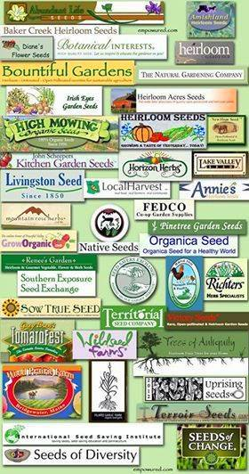 seeds of change - 4 Ways To Keep Monsanto Out Of Your Home Garden