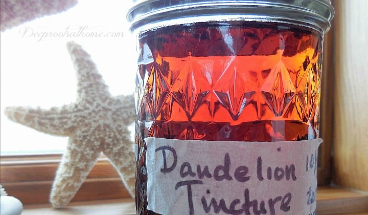Hormone-Balancing - Blood-Building- Detoxifying Dandelion Tincture. A jar of my herbal remedy, Dandelion tincture, a powerful blood liver cleanser,