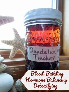Hormone-Balancing - Blood-Building- Detoxifying Dandelion Tincture. A jar of my herbal remedy, Dandelion tincture