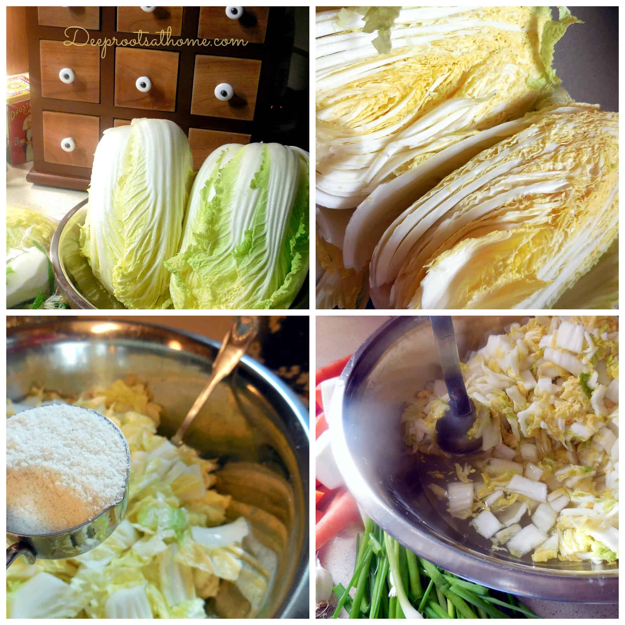 5 Elements To Making Authentic Basic Fermented Kimchi. food preservation, lacto-fermentation