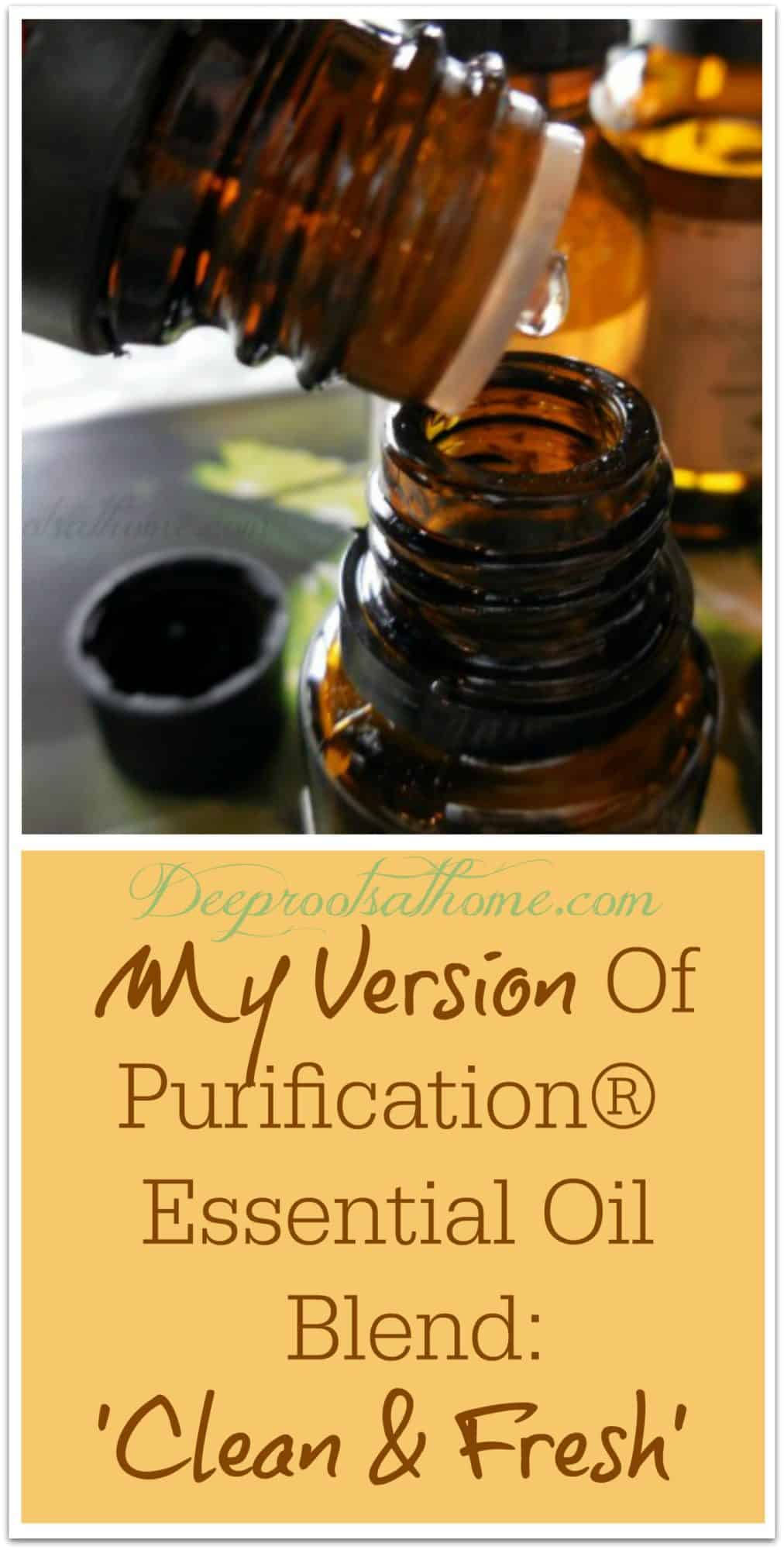 My Version Of The Well-Known Purification® Essential Oil Blend