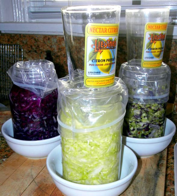 5 Elements To Making Authentic Basic Fermented Kimchi. fermenting