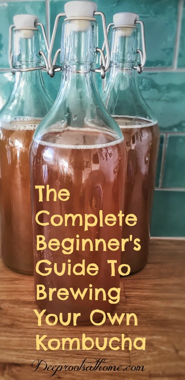A Complete Beginner's Guide To Brewing Your Own Kombucha. Kombucha bottled up and ready to store in the refrigerator.