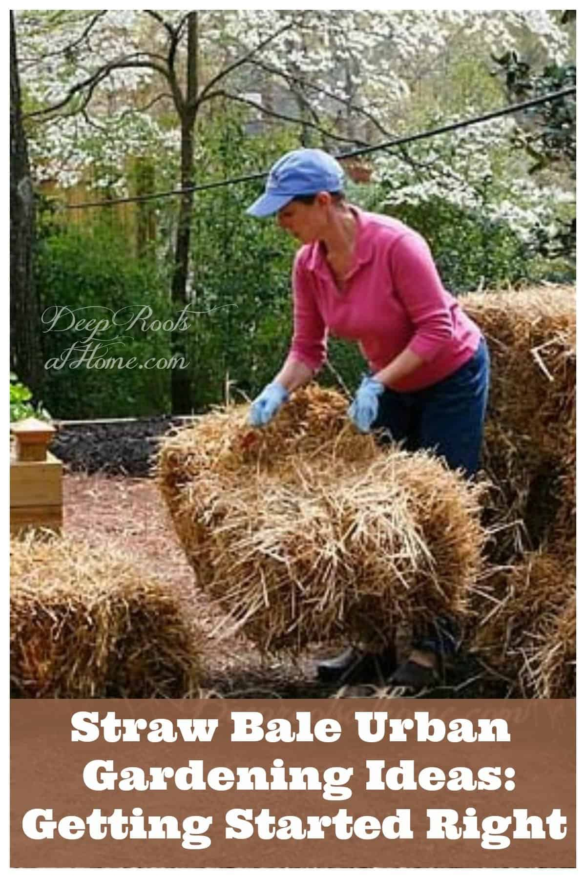 Straw Bale Urban Gardening: Ideas and Getting Started Right. small scale straw bale gardening