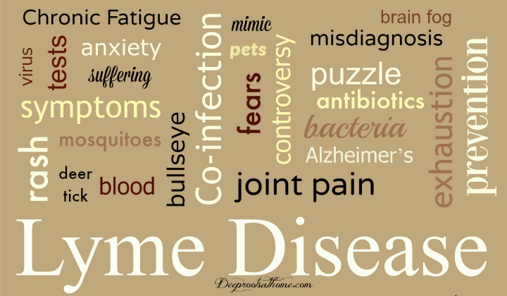History Of Chronic Pain? Investigate the Possibility of Lyme Disease. key words