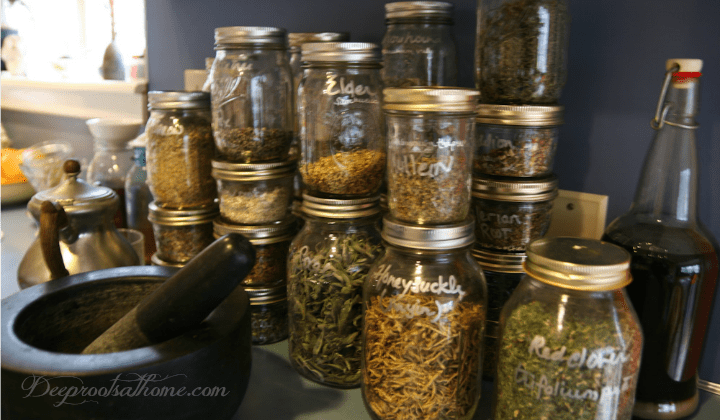 12 Herbs Commonly Used During Pregnancy and Breastfeeding. Dried herbs being stored in glass jars.