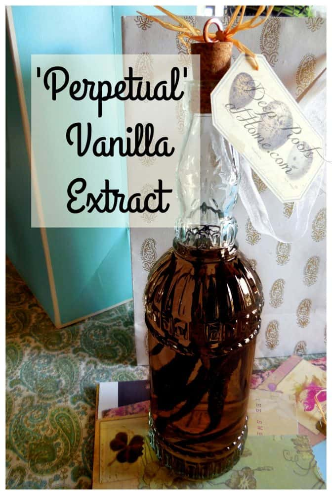 Perpetual vanilla extract gift