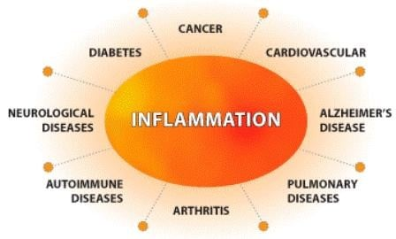 Inflammation Bomb: Tomato-Turmeric Pepper Soup Family Recipe. Chart showing the connection with 8 wide categories of diseases.