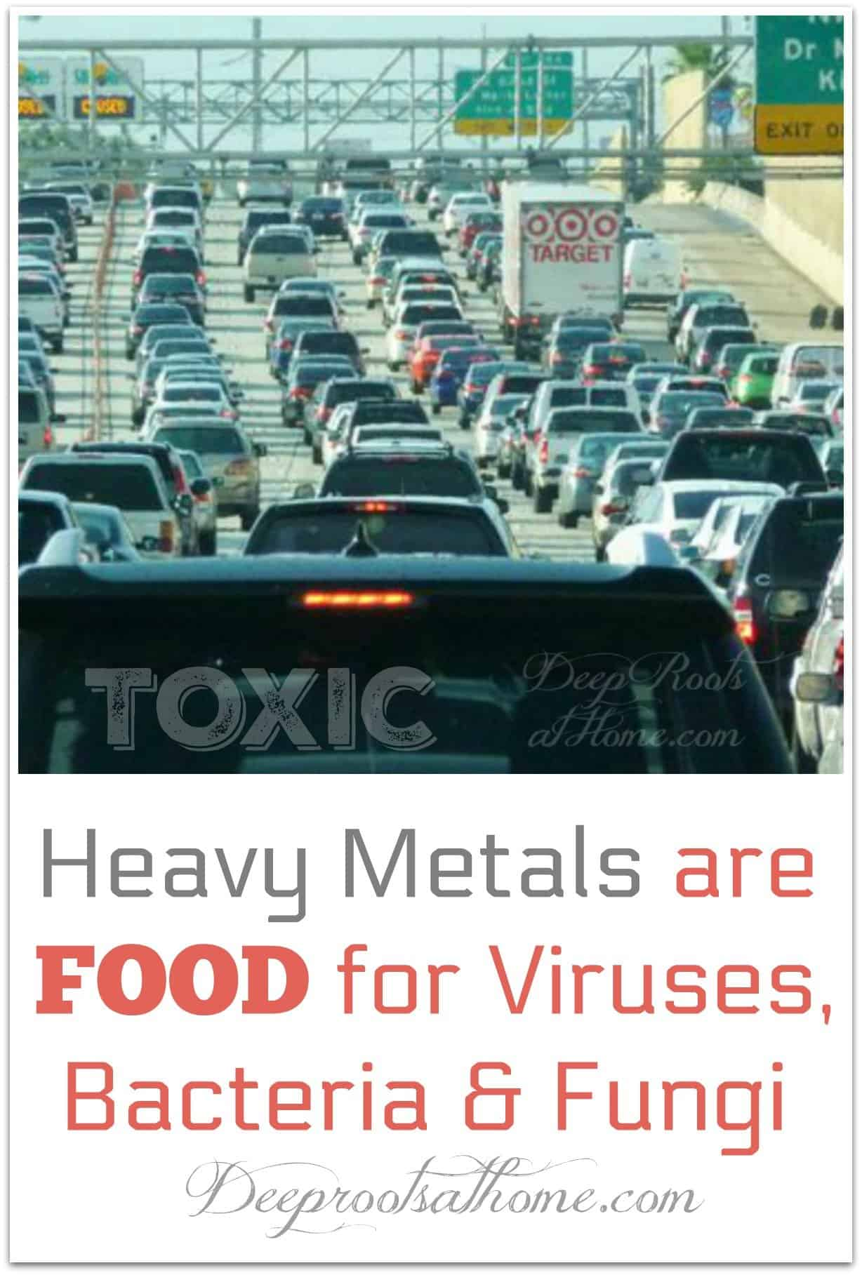 Heavy Metals are FOOD for Viruses, Bacteria, and Fungi. fumes from traffic jam