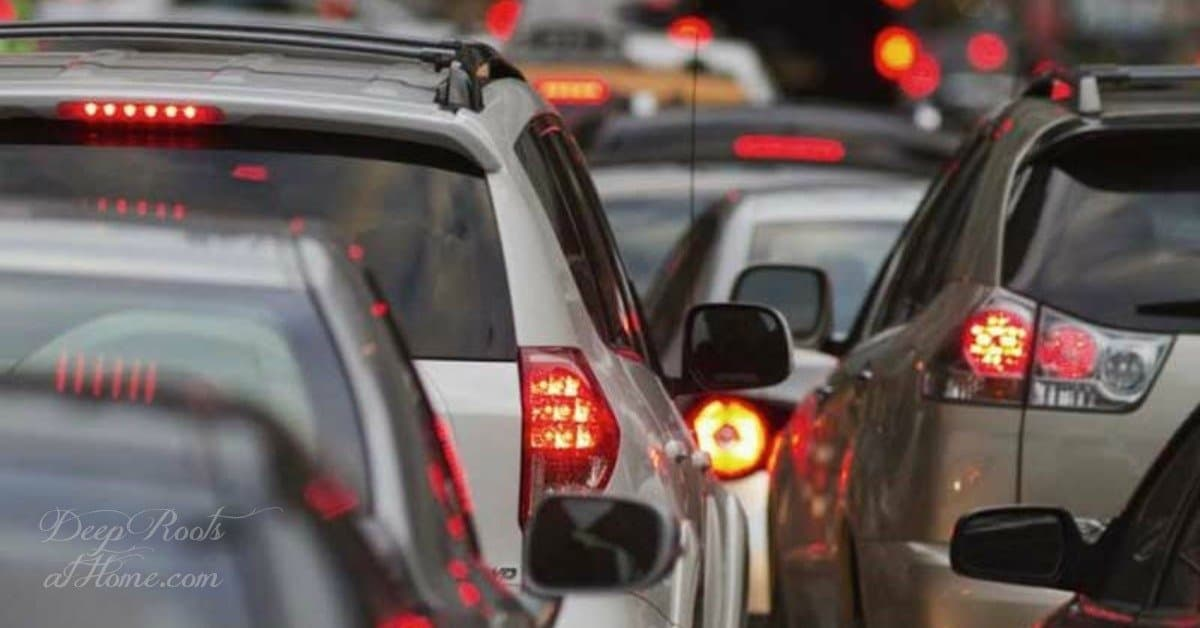 Heavy Metals are FOOD for Viruses, Bacteria, and Fungi. traffic jam