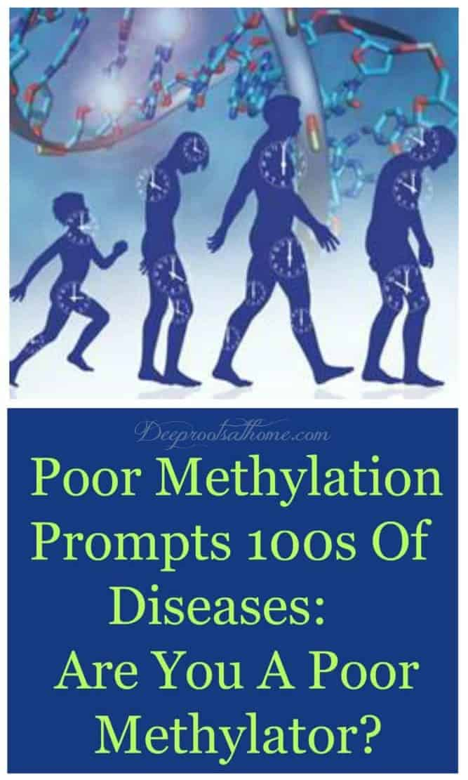 MTHFR Simplified: Poor Methylation Prompts 100s Of Diseases
