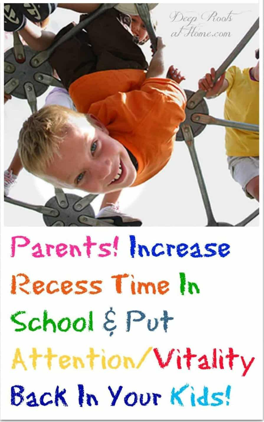 Parents! Increase Recess Time & Put Attention/Vitality Back In the Kids! Kids playing and hanging from a jungle gym.