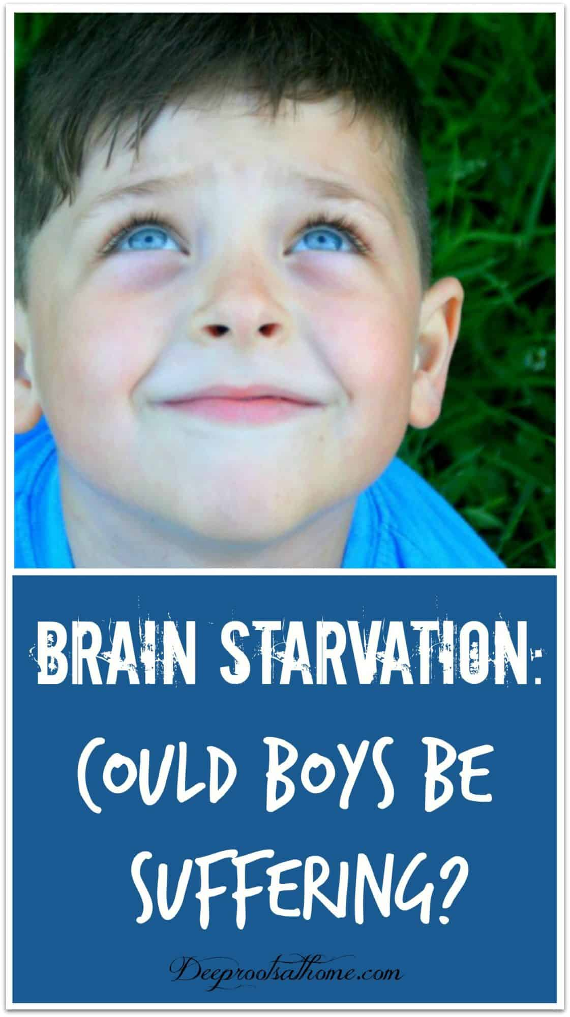 Brain Starvation: Could Boys Be Suffering?Brain Starvation: Could Boys Be Suffering? A happy, young, smiling boy with blue eyes looking up to the sky! Pin image.