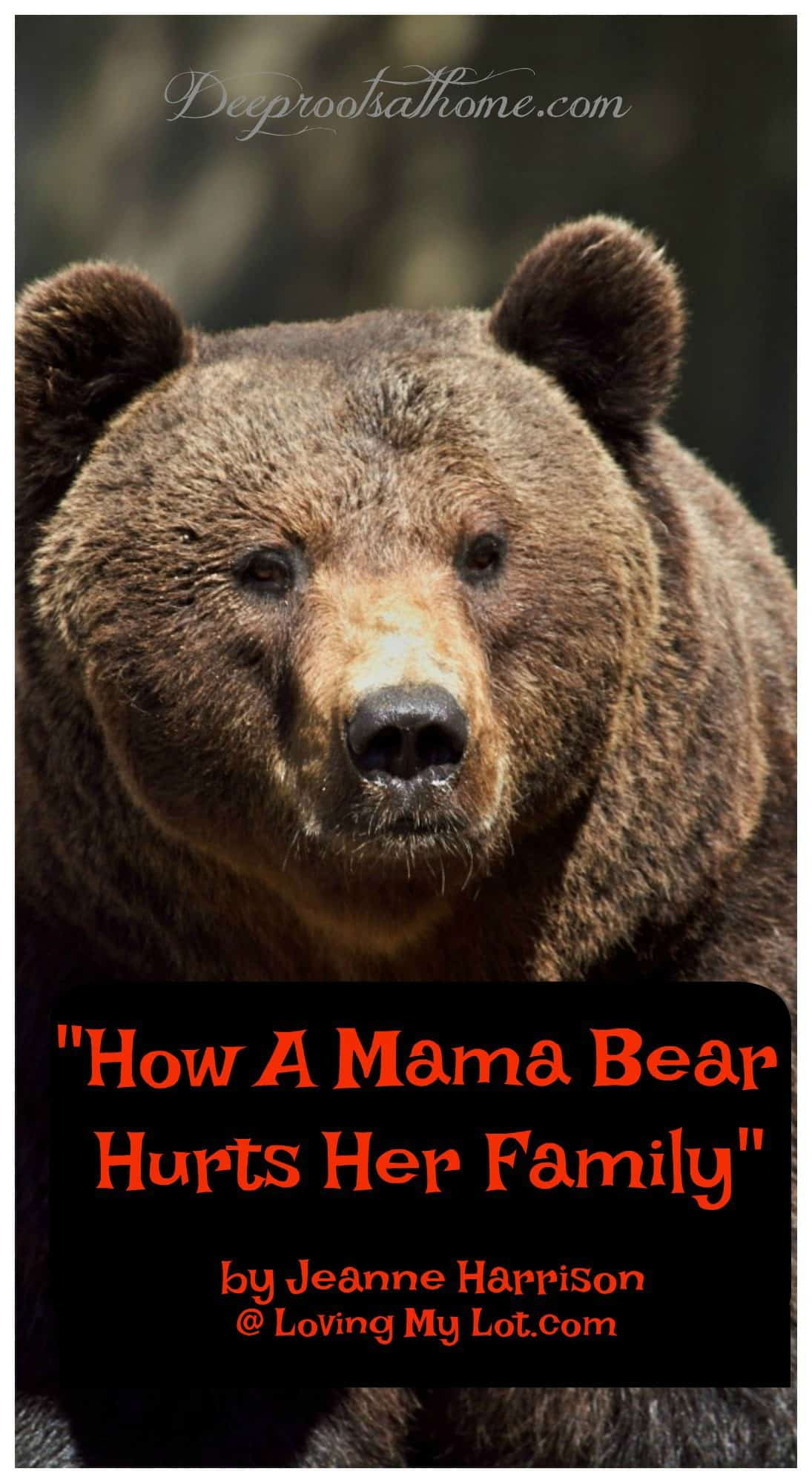 """How A Mama Bear Hurts Her Family"" by Jeanne Harrison, analogy, mama swan, cygnets, grizzly bear, loud, obnoxious, family, care too much, Christian, protect, fragile, foundation of toothpicks, exhausting, mother, wife, heart, hands, worry, concern, love, joy, affection, fear, emotional capacity, husband,burden, protective, controlling, short-circuit, teaching to trust Jesus, heartache, suffering, abide in Christ, Psalm 46: 1-2, woman, fix it, assurance, house built on sand, Solid Rock, love, selfish,"