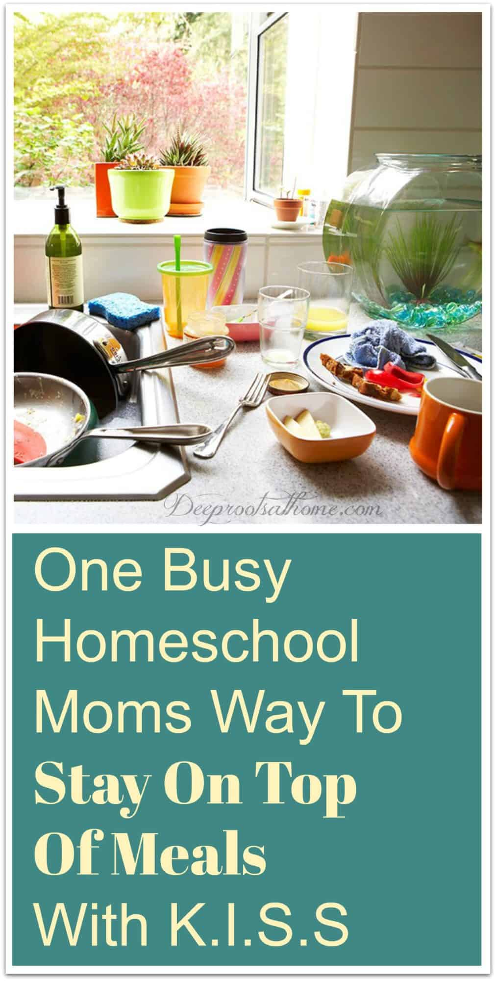 One Busy Homeschooling Mom's Way To Stay On Top Of Meals With K.I.S.S. A pretty, well-designed kitchen sink by a window with dirty dishes and a fish bowl
