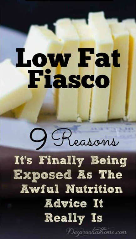 Low Fat Fiasco: Exposed For The Awful Nutrition Advice It Is! Science shows us 9 reasons. #food #healthy #wellness  #science  #health  #happy  #dieta  #women  #recipe #mentalhealth  #guthealth #healthyfood #keto  #ketogenic #ketorecipes