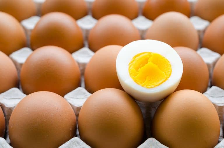 Low Fat Fiasco: 10 Reasons It's Finally Being Exposed As The Awful Nutrition Advice It Really Is!, brown eggs, egg carton, egg yolk,